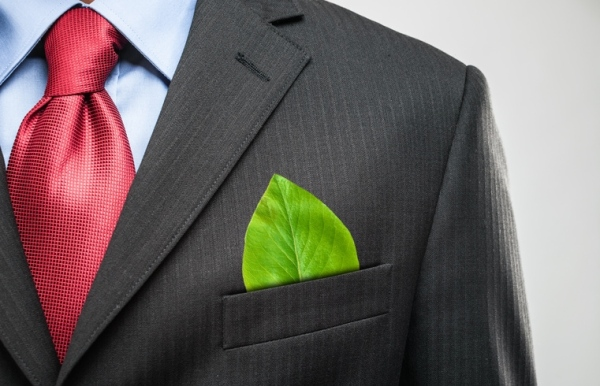 L'écologie : source d'espoir pour les patrons de TPE