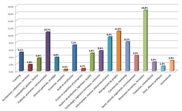 graph des domaines d'expertise des consultants ITG