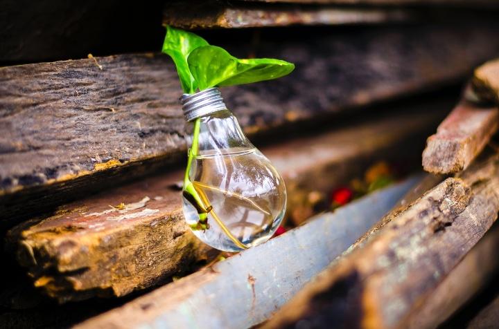 Qu'est-ce que l'innovation frugale ?